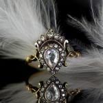 19.roosdiamant-kroon